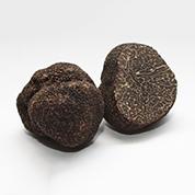 Truffes noires hiver