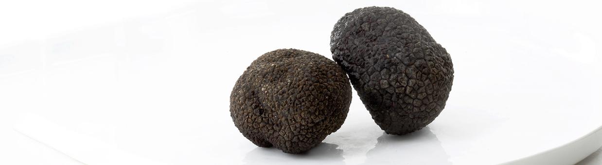 Découvrez les truffes proposées au Comptoir Corrézien